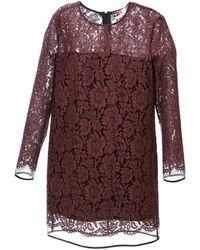 MSGM Lace Shift Dress - Lyst