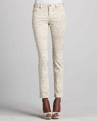 Christopher Blue Sophia Animal rPint Skinny Jeans - Lyst