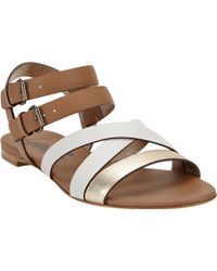 Lanvin Multistrap Flat Sandals - Lyst