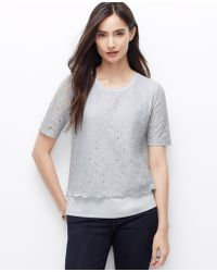 Ann Taylor Petite Lace Overlay Top - Lyst