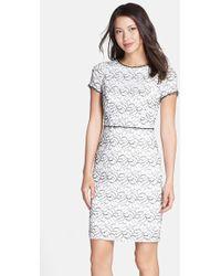 Adrianna Papell Embellished Trim Lace Sheath Dress - Lyst