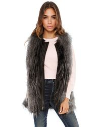 Jet By John Eshaya Fur Vest with Leather Trim - Lyst