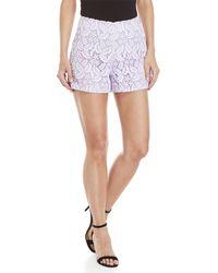 Giamba - Lace Shorts - Lyst