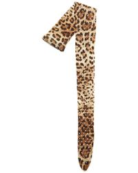 Dolce & Gabbana - Animal Print Tights - Lyst