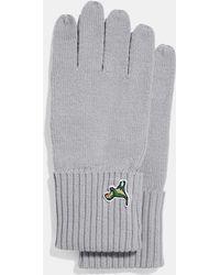 COACH - Knit Tech Rexy Gloves - Lyst