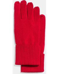 COACH - Knit Tech Glove - Lyst