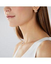 Coast - Aliah Earrings - Lyst