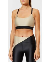 716055a3f0351 DKNY Energy Seamless Bralette in Gray - Lyst