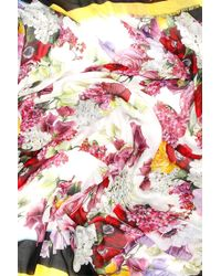 Dolce & Gabbana - Floral-printed Maxi Scarf - Lyst