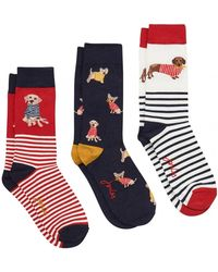 Joules - Womens Bamboo Socks A/w - Lyst