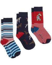 Joules | Brilliant Bamboo Womens Sock Set (x) | Lyst