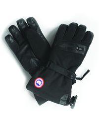 Canada Goose - Northern Glove - Lyst