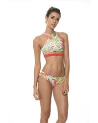 Malai Swimwear - Sylvan Cockatoo High Neck Top T - Lyst