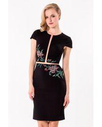 Terani - Sleek Embellished Sheer Panel Cocktail Dress Ca - Lyst