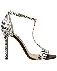 Alberto Guardiani Shoes Raquel Sandal 10 Heel Leather And Ayers Print - Lyst