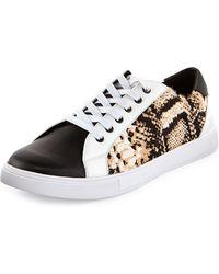 Just Cavalli Python-print Calf-hair Low-top Sneaker - Lyst
