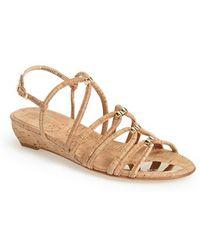 Stuart Weitzman Nuts Strappy Sandals - Lyst