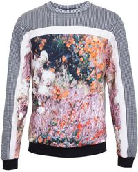 Carven Checked Sweatshirt with Abstract Floral Print - Lyst