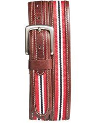 Jack Mason Brand - 'tailgate - South Carolina Gamecocks' Belt - Lyst