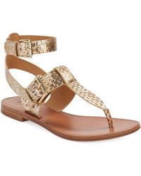 Belle By Sigerson Morrison Reily Thong Sandals gold - Lyst