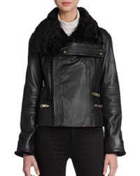 Badgley Mischka Shearling-trimmed Leather Jacket - Lyst