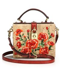 Dolce & Gabbana Embroidered Cork & Snakeskin Crossbody Bag - Lyst