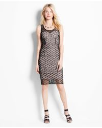 Ann Taylor Petite Lace Overlay Sheath Dress - Lyst