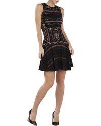 BCBGMAXAZRIA Jalina Sleeveless Lace-Blocked Dress - Lyst