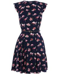 Oasis Flamingo Viscose Skater Dress - Lyst