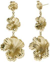Meadowlark - Coral Drop Earrings - Lyst