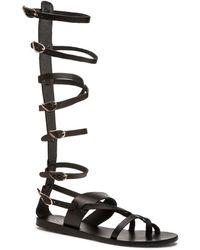 1a402d053a35 Sigerson Morrison Basper Studded Knee-high Gladiator Sandal in Brown ...