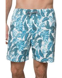 Coast - Tonals Palms Board Short - Lyst