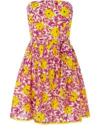 Oasis Honey Flower Pom Pom Dress - Lyst