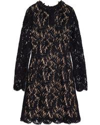 Lanvin Embellished Flocked Lace Dress - Lyst