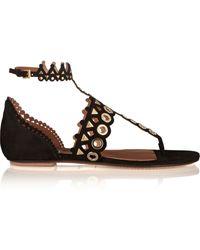Alaïa Embellished Laser-Cut Suede Sandals - Lyst
