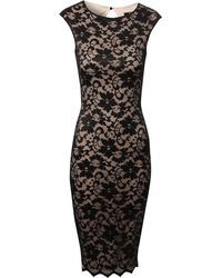 Jane Norman Lace Bodycon Midi Dress - Lyst