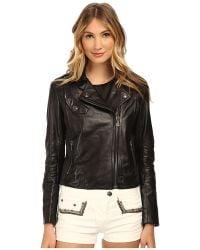 Balmain Leather Moto Jacket - Lyst