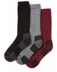 Tog 24 - Black, Chilli, Dark Grey Rig Ton 3 Pack Merino Trek Socks - Lyst