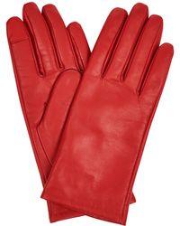 Hobbs - Red 'emma' Gloves - Lyst