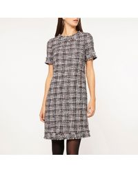 381778e38c8 Dorothy Perkins - Tall Navy Berry Boucle Shift Dress - Lyst