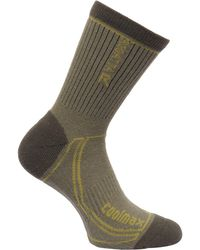 Regatta - Green '2season' Trek And Trail Socks - Lyst