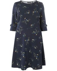 Dorothy Perkins - Curve Navy Bow Sleeves Fit And Flare Dress - Lyst