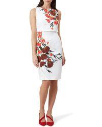 Hobbs - Multicoloured Floral Print 'bree' Pencil Dress - Lyst
