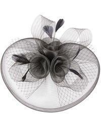 Quiz - Black Rose Large Net Fascinator - Lyst