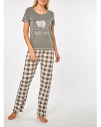 Dorothy Perkins - Grey Polar Bear Pyjama Set - Lyst