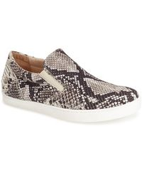 French Sole - 'oasis' Snake Print Sneaker - Lyst