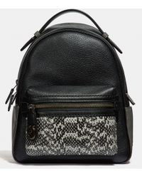 COACH - Colorblock Snake Skin Campus Backpack 23 - Lyst