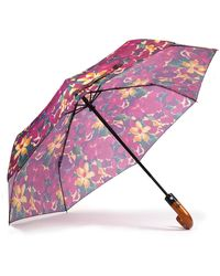 Patricia Nash - Blooming Romance Collection Magliano Umbrella - Lyst