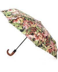 Patricia Nash - Cuban Tropical Collection Magliano Umbrella - Lyst
