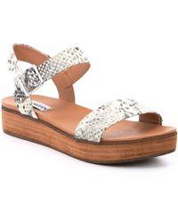 a0a99ac23fd4 Steve Madden - Aida Snake Print Leather Flatform Sandals - Lyst